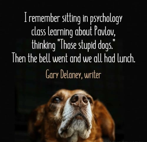 Pavlov's Dogs - Humans do it, too.